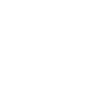 Ballet_pattern_2_bianco