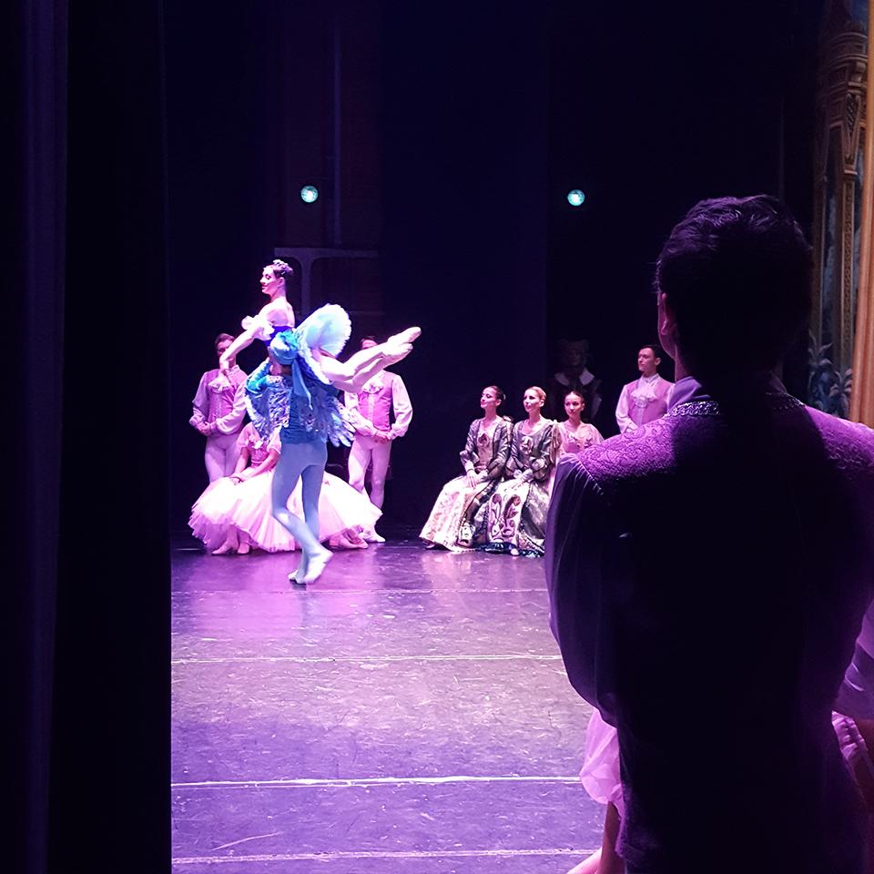 Ballet-Dream-School_Riconoscimenti_Bella-addormentata_3